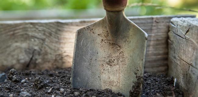 gardening02